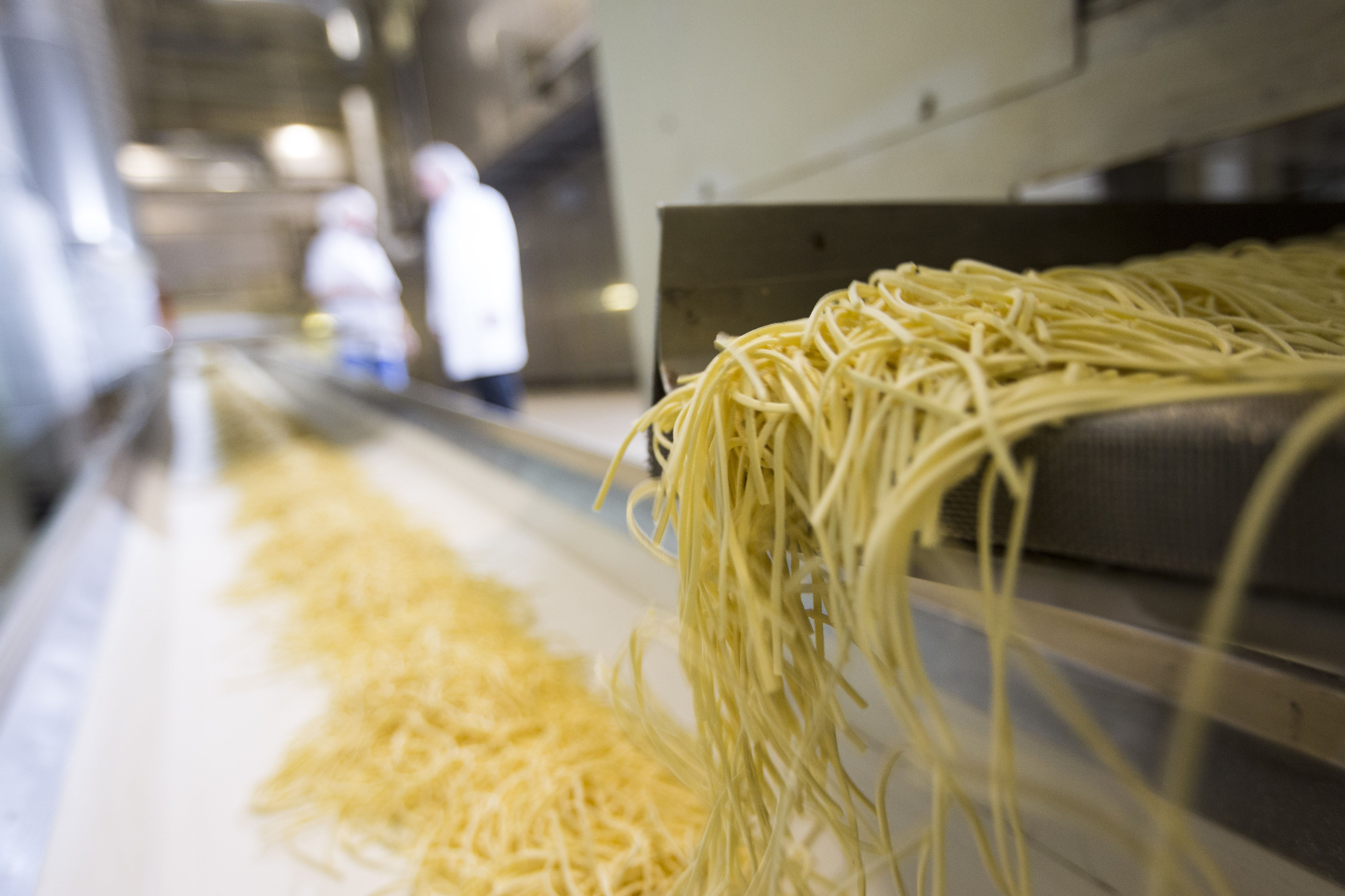 In the long drying lines, the water content is reduced from over 30 % to a maximum of 13 %.